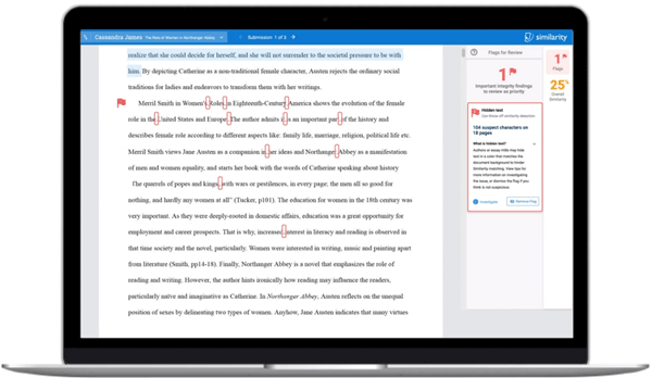 Turnitin Similarity interface, demonstrating the ease with which content manipulation is displayed to the teacher