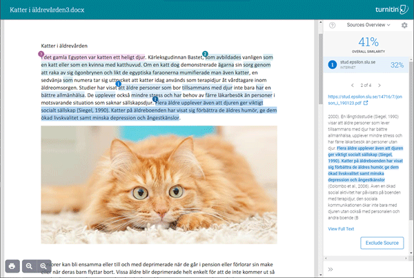 Turnitin new tech branch interface, keeping the original formatting of the submitted document